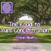 The Road to Pure Concentration (7 Hour Album), RelaxingRecords