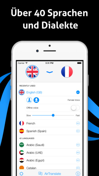 iTranslate Voice - magischer Übersetzer & Wörterbuch Screenshot