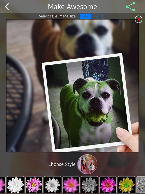 Cool PIP Effects Screenshots