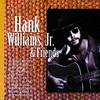 Hank Williams, Jr. & Friends, Hank Williams, Jr.