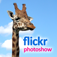 Flickr Photoshow for iPhone