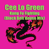 Kung Fu Fighting (Black Belt House Mix) - Single, Cee Lo Green