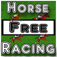Horse Racing Free Version