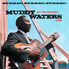 Muddy Waters At Newport 1960, Muddy Waters