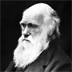 Research: Charles Darwin's writings