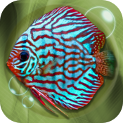 Tropical Aquarium icon