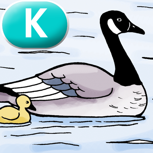 Migrating Geese – LAZ Reader [Level K–second grade]