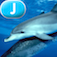 Ocean Animals - LAZ Reader [Level J–first grade]