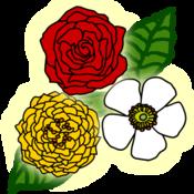 Rose Puzzle 玫瑰谜题