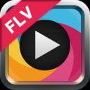 Easy FLV Converter