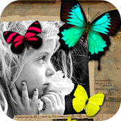 Butterflying for iPhone icon