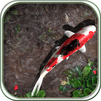 Best virtual pond and aquarium apps ipad iphone apps appguide for Koi pond app