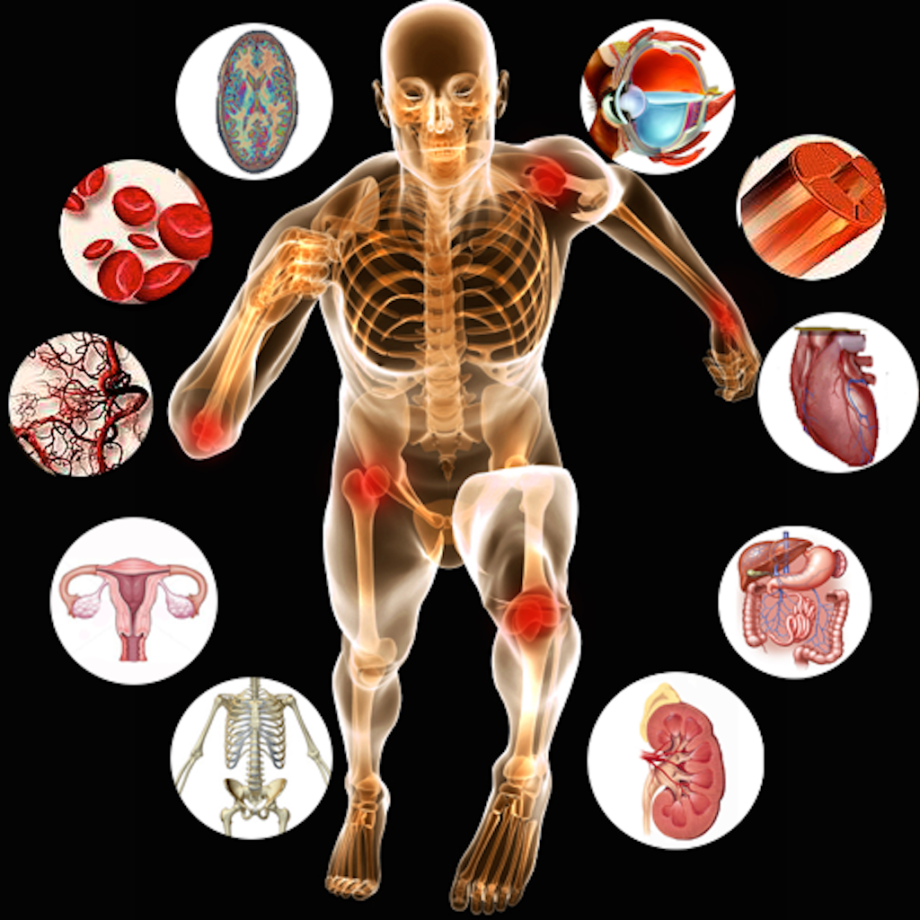 Anatomy And Physiology Terminology - Lessons - Tes Teach