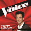 Beautiful Day (The Voice Performance) - Single, Tony Lucca