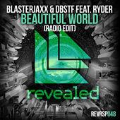 BlasterJaxx – Beautiful World (feat. Ryder) [Radio Edit] – Single [iTunes Plus AAC M4A] (2015)