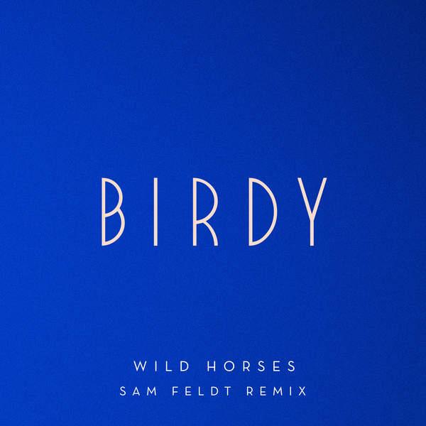 Birdy - Wild Horses (Sam Feldt Remix) - Single [iTunes Plus AAC M4A] (2016)