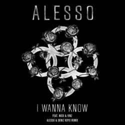 View album Alesso - I Wanna Know (feat. Nico & Vinz) [Alesso & Deniz Koyu Remix] - Single