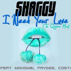 View album I Need Your Love (Te Quiero Mas) [feat. Mohombi, Faydee & Costi] - Single