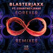 BlasterJaxx – Forever (feat. Courtney Jenaé) [Remixes] – EP [iTunes Plus AAC M4A] (2015)