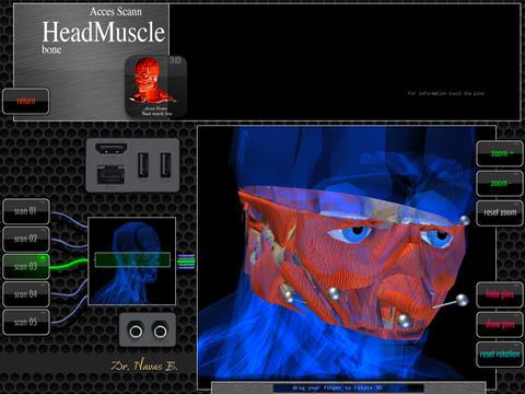 Acces Scann Head Muscle Bone