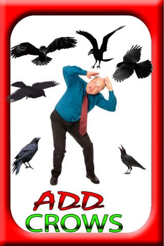 Add Crows