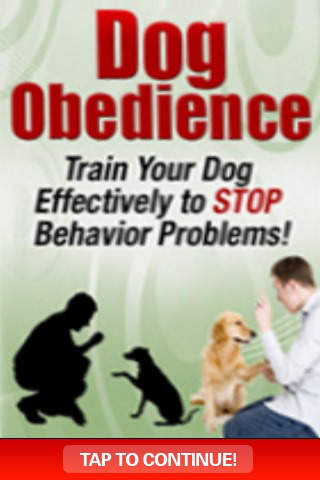 Dog Obedience - Train Your Dog To Stop Behavior Problems