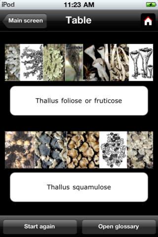 Epiphytic macrolichens of Estonia iPhone Screenshot 2