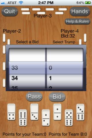 Dominos-42 iPhone Screenshot 2