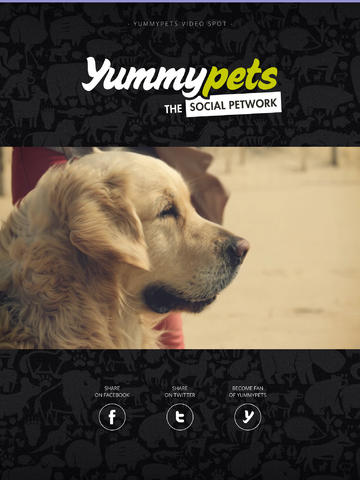 YummyMag 01 EN - Community's digital magazine for every pet owner