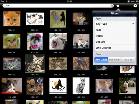 Image Hunter - searching images on Google iPad Screenshot 4