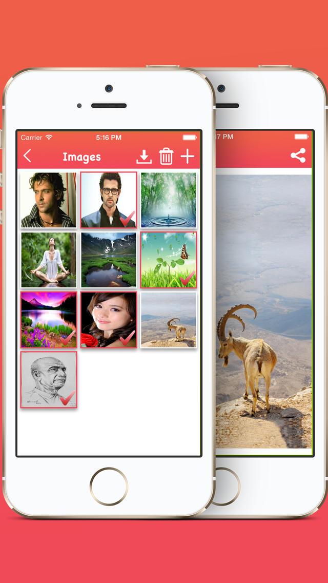 Media Wallet Pro  Screenshot