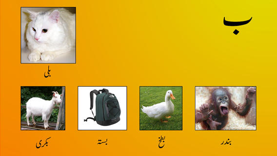 My First Book of Urdu HD