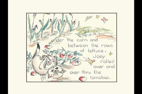 Joey by Elizabeth Ann Jones Dutro