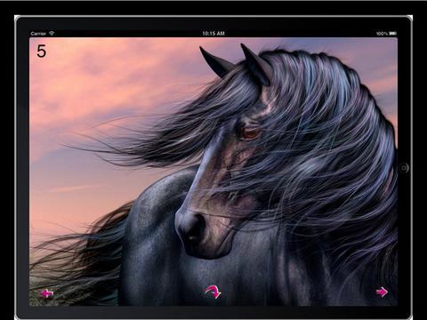 Horse Wallpaperz HD