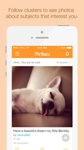 PixBuzz - Collaborative themed albums and contests for Instagram