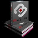 Magnus Tschechische Wörterbücher