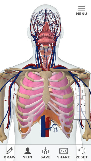Pulmonology Patient Education by CoherentRx