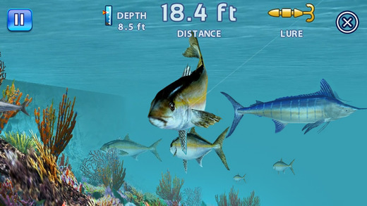 Fishing kings free on the app store for Fishing tournament app
