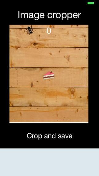 Image Cropper App