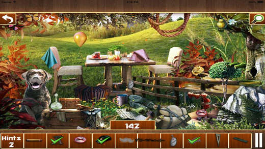 Hidden Objects : Forest Story