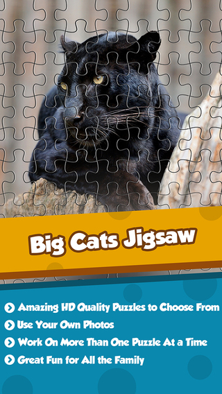 Big Cats Puzzle 4 Kids Endless Jigsaw-Adventure