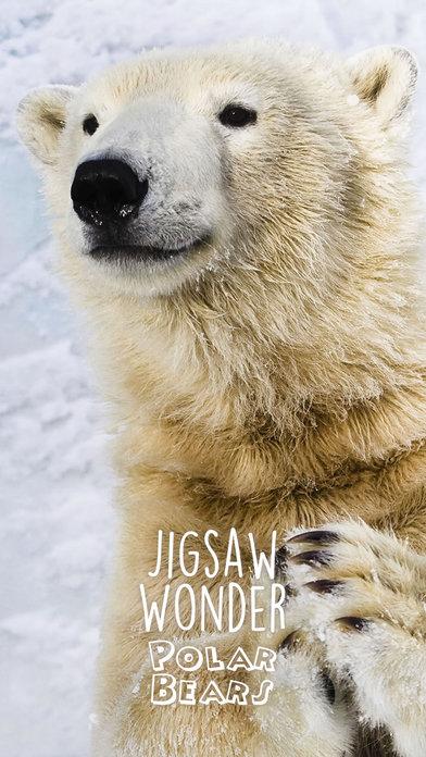 Jigsaw Wonder Polar Bears for Kids screenshot 4