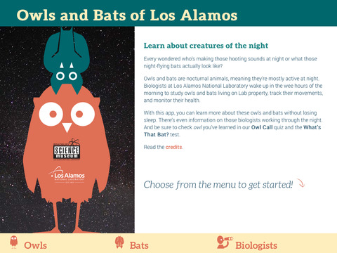 Owls Bats of Los Alamos