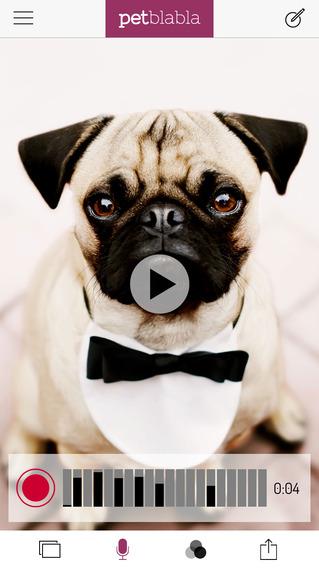Pet BlaBla - Make Your Cat, Dog or Pet Talk