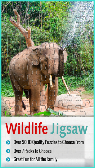 Wildlife Jigsaw Puzzle Quest - Family Enterainment And Knowledge For Kids With HD Problems