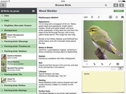 Bird Guide Mini: A Guide to 20 British Birds iPad Screenshot 1
