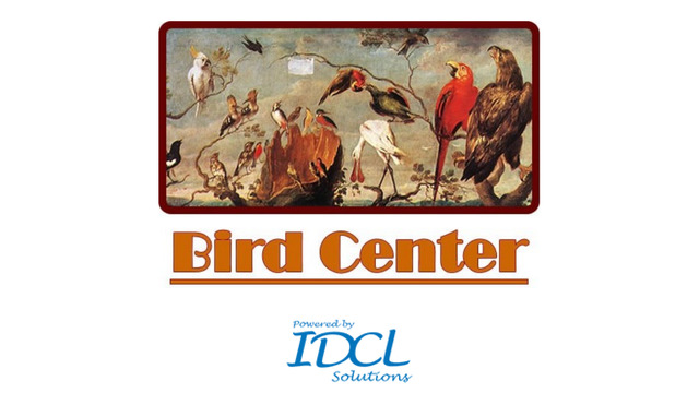 Bird Center : Kids Learn Birds|玩教育App免費|玩APPs
