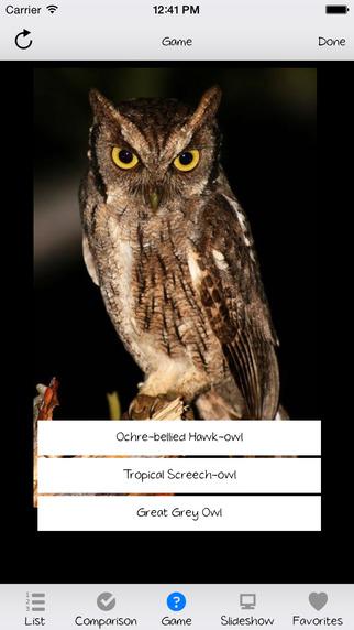 Owl Expert