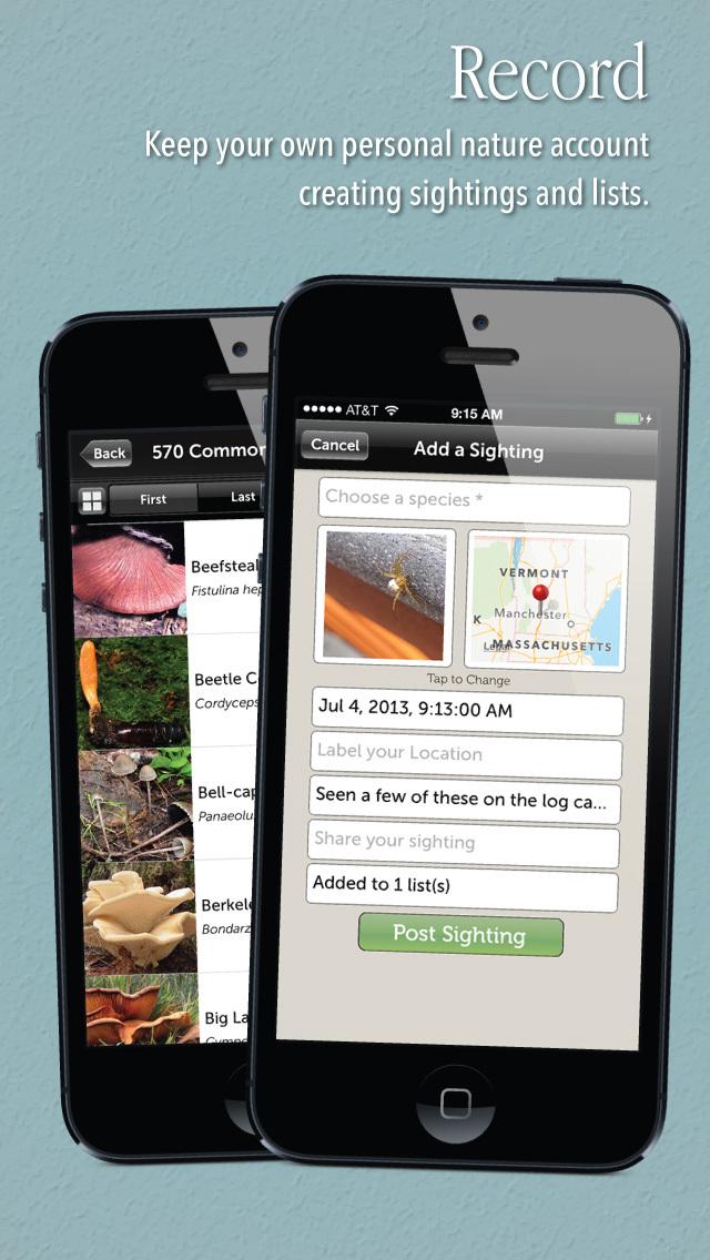 green mountain digital audubon guides