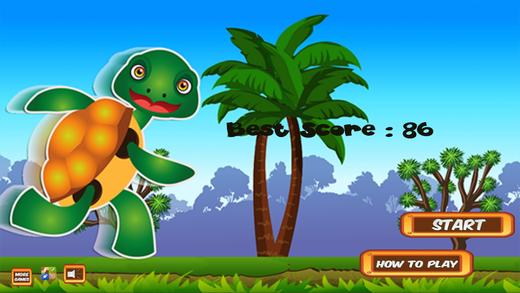 Ninja Running Turtle - Run And Jump In The Fun Dojo 3D Game For Kids